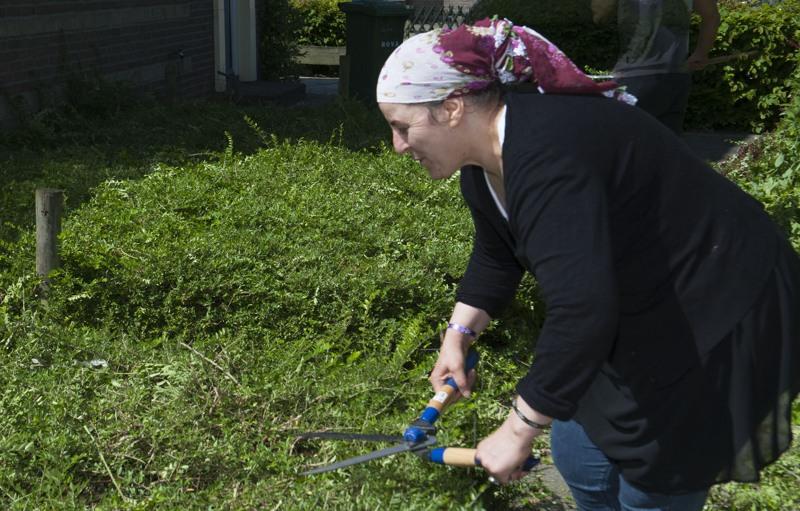 Snoeien gemeentegroen Kruiskamp klusdag